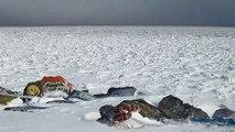 Lake Michigan Does Its Arctic Ice Lake Impression, Post Blizzard new, Northwestern Univer