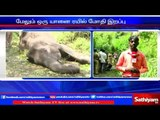 Two elephant dies in Coimbatore , 10 elephants died in last two months | Sathiyam TV News