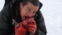 A Prueba De Todo   1x01, programa de supervivencia extrema presentado por bear grylls