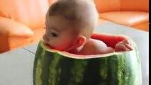 يما عالبطيخ يما