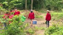 A l'heure des camps d'été, le scoutisme français en plein essor