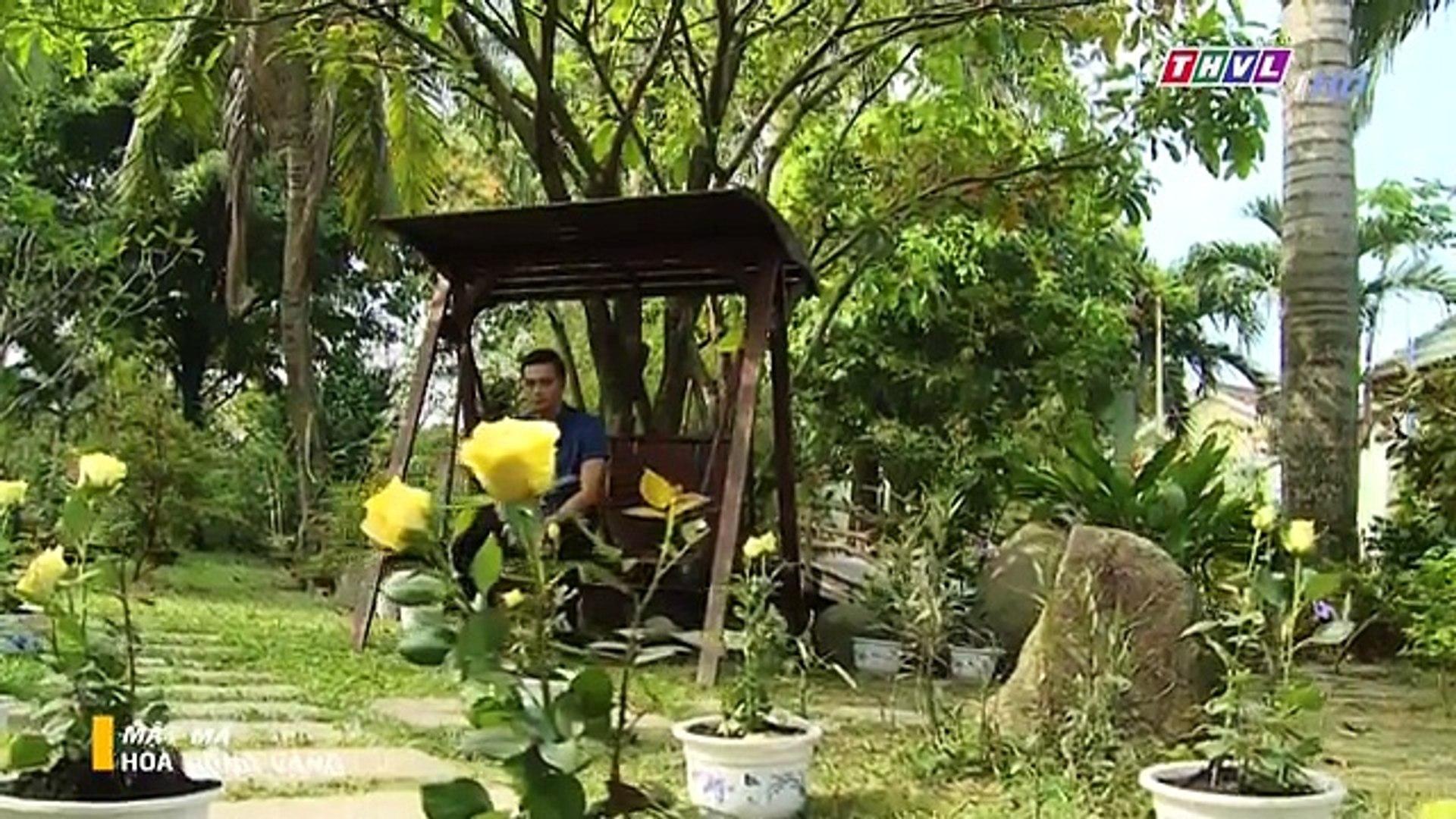 Mật mã hoa hồng vàng tập 46 - tập cuối || Phim Việt Nam - THVL1 || Mat ma hoa hong vang tap 46 - tập