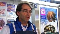 Noticia | El pulpo gallego tiene un gran competidor: el pulpo africano