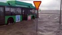 Un bus amphibie, ce fou roule dans 1m d'eau