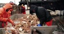 Deadliest Catch Crab Fishing in Alaska S06 - Ep11 Blown Off Course HD Watch
