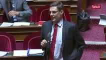 """Logement HLM  : """"si on ne vend pas 40 000 logements sociaux par an, le système sera planté"""" estime Philippe Dallier sénateur LR"""