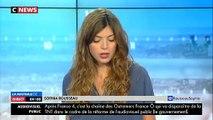 Affaire Alexandre Benalla : Cette nouvelle vidéo où le collaborateur de l'Elysée agresse cette fois une femme lors de la manif du 1er mai