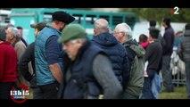 Ariège : l'omerta des montagnes protègerait-elle des chasseurs d'ours ?