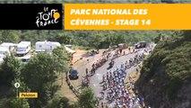 Parc national des Cévennes - Étape 14 / Stage 14 - Tour de France 2018