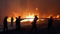 Τραγωδία στην Αττική - Πάνω από 20 νεκροί από τις πυρκαγιές