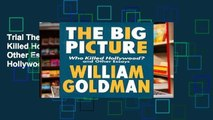 """Trial The Big Picture: """"Who Killed Hollywood?"""" and Other Essays: """"Who Killed Hollywood?"""" and Other"""