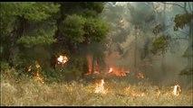 Πύρινη «κόλαση» στην Κινέτα - Κάηκαν σπίτια και στην Πεντέλη (Vid)