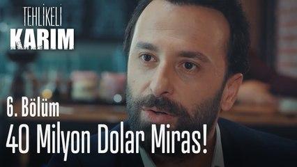 40 Milyon dolar miras - Tehlikeli Karım 6. Bölüm