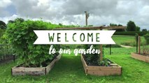 WELCOME TO OUR GARDEN! July 2018 // MONICA T.