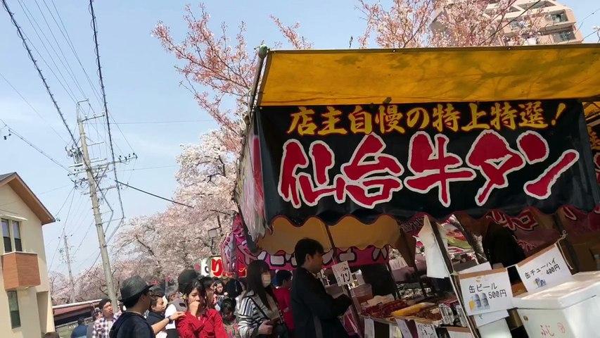 Nhật bản mùa hoa anh đào nở - Du lịch Nhật Bản - Ohman.vn | Godialy.com