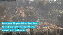 Mayor Admits To Mistakes Made During Greek Wildfires