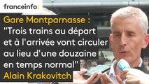 Au départ de la gare Montparnasse, trois trains au départ et à l'arrivée vont circuler au lieu d'une douzaine en temps normal, annonce Alain Krakovitch, de la SNCF