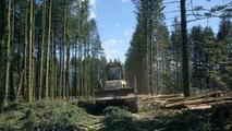 Le Temps des forêts Bande-annonce VF (2018) Documentaire