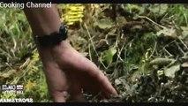 MeatEater - S01E02 - The Sweetest Meat Alaskan Black Bear