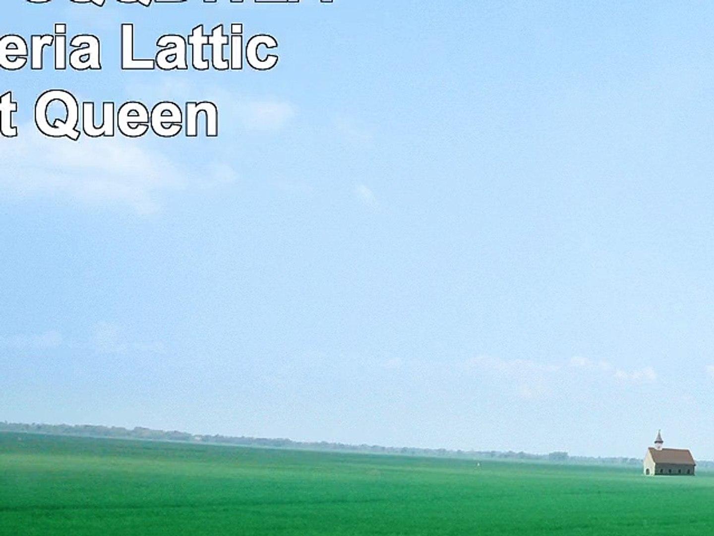 Patch Magic SQQBWLA Blue Wisteria Lattice 3 Quilt Queen
