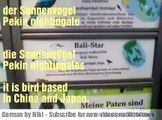 Some birds names  in German and English Language, Learn German Language