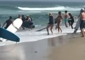 Surfers Flee Cape Cod Waters as Shark Attacks Seal at Nauset Beach