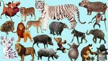apprendre les animaux de la savane en français || son danimaux pour bébé