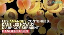 Les amandes dans les abricots exposent à des risques d'intoxication au cyanure