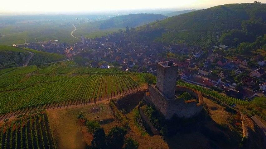 Alsace : mystères d'un grand terroir