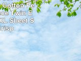 Dorm Room 300 Thread Count 100 Cotton Percale 3 Piece Twin Extra Long XL Sheet Sets