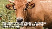 Ces 5 entreprises de viande et de produits laitiers polluent plus qu'ExxonMobile, BP ou Shell