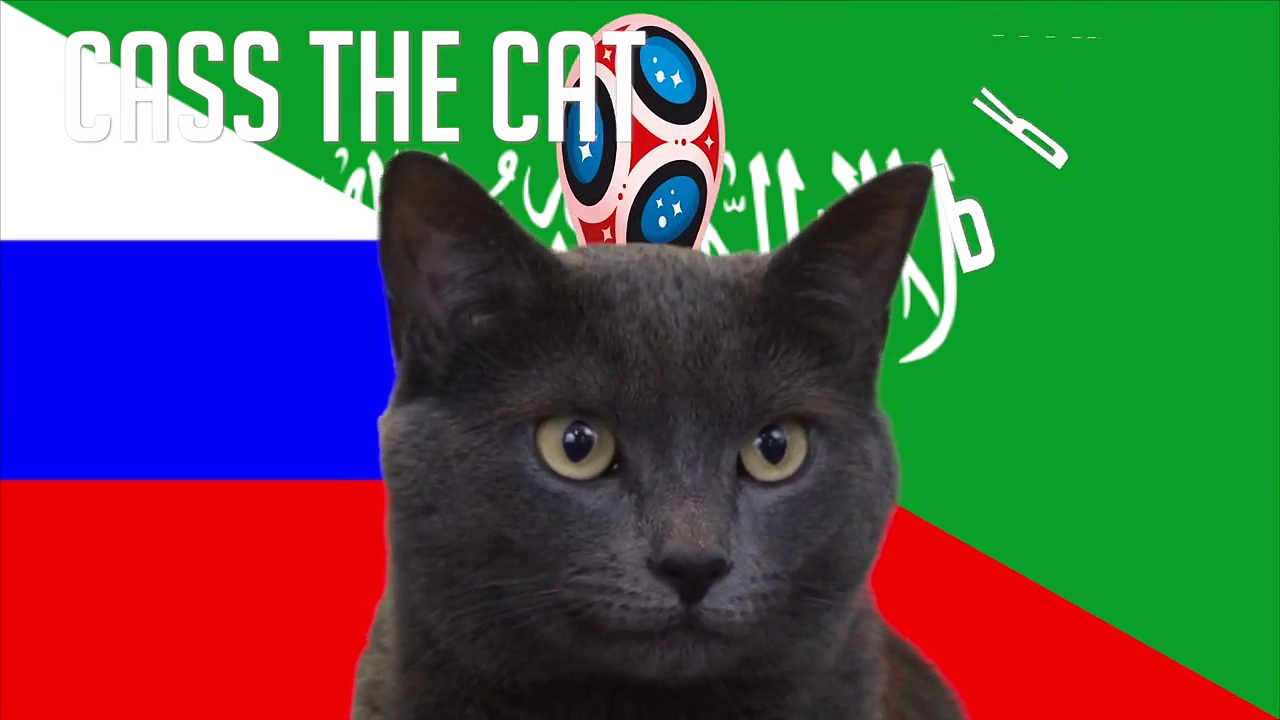 Russia vs Saudi Arabia | Group A | 2018 FIFA World Cup Cass the Cat Prediction