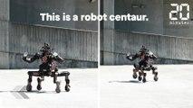 Ce robot vous sauvera la vie - Le Rewind du Mercredi 01 Août 2018