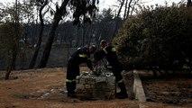 Waldbrände in Griechenland: Sind illegal gebaute Häuser schuld an der Tragödie?