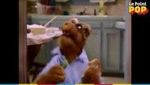 Trois scènes cultes de l'extraterrestre Alf