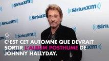 Johnny Hallyday : Le titre de son album posthume dévoilé ?