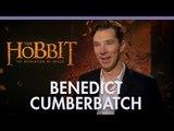 Benedict Cumberbatch 'The Desolation of Smaug'