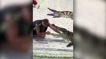 In Thailand gibt es immer noch Tiershows - zum Beispiel mit lebenden Krokodilen. Dabei legt ein Dompteur seinen Arm oder sogar seinen Kopf in den Rachen eines d