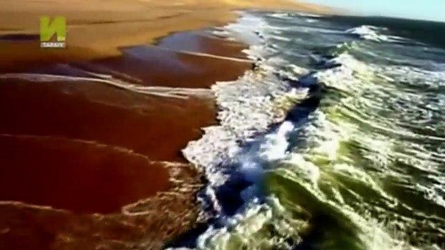 Nature  039 s Microworlds S01  E09 Namib Desert