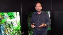 Bravia AF9 et ZF9 : Sony dévoile sa nouvelle gamme de télés OLED et LCD