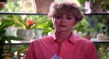 Doogie Howser, M.D. S03 - Ep02 Doogie Has Left the Building (1) HD Watch