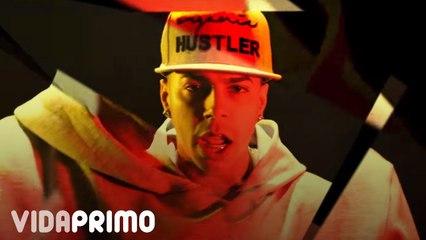 Papi Wilo - Cien Estilos (Freestyle 19) [Official Vídeo]