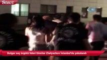 Bulgar suç örgütü lideri Dimitar Zhelyazkov ile birlikte 6 şüpheli İstanbul'da yakalandı