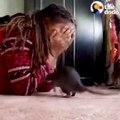 Ce rat adore jouer à cache-cache avec son maitre... Trop mignon