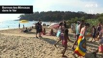 Dans le Var, les vacanciers luttent contre la chaleur