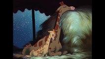 Dumbo - Mon tout petit