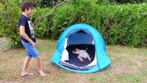 CAMPING DANS LE JARDIN - On monte une drôle de tente !