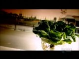How its Made Hydroponic Lettuce