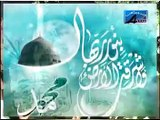 Muhammad Abbas Baloch l Hussain O Mini Wa Ana Minal Hussain l Nohay 2011 - HD