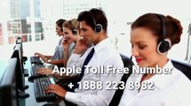 !!!Is there a 24 hour Apple service toll free number +1888 223 8982 availible for our customer |   Apple customer service number 24 hours
